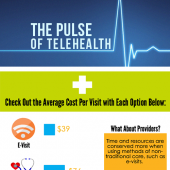 blog-pulse-of-telehealth-icon-healthcare-costs-infographic