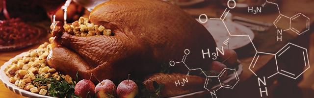 blog-turkey-tryptophan