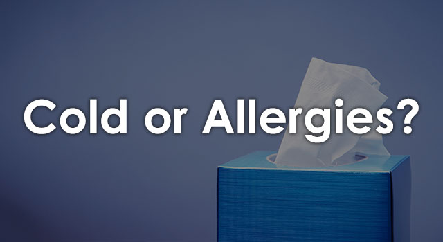 blog-quiz-is-it-cold-or-allergies