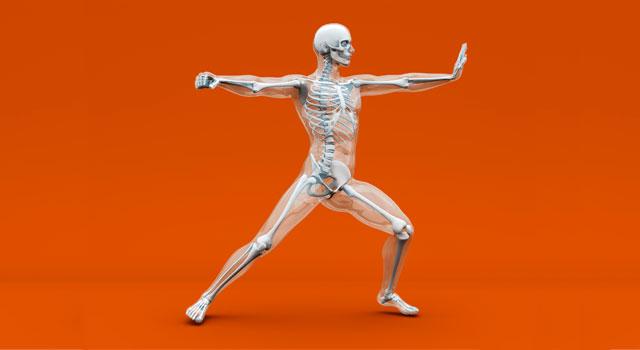 blog-musculoskeletal