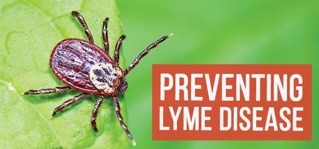 blog-prevent-lymr-disease