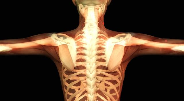 blog-vitamin-d-bone-health