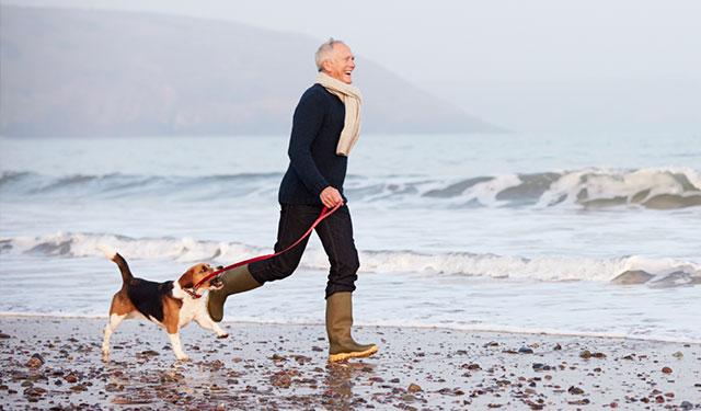 blog-dog-heart-healthy