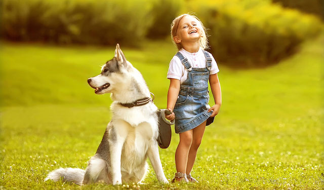 blog-dogs-kids-allergies