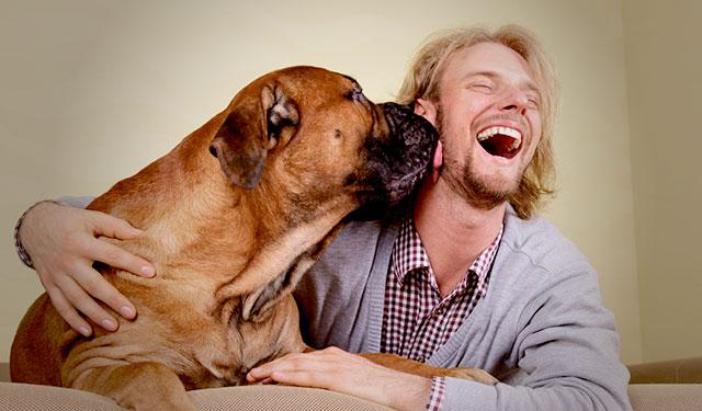 blog-dogs-mental-health