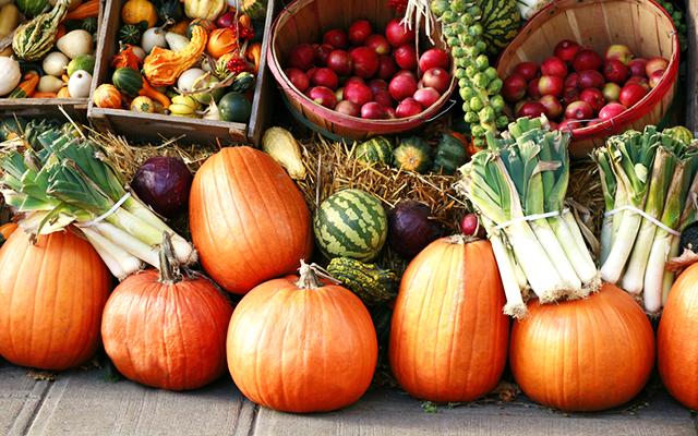 blog-fall-produce
