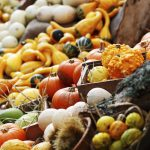 Healthy Fall Produce to Add to Your Grocery List