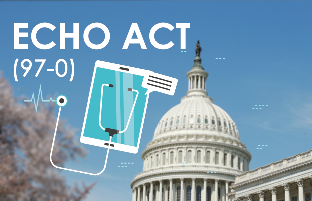 blog-echo-act-passes