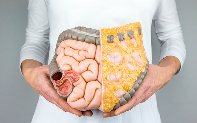 blog-digestive-disorders